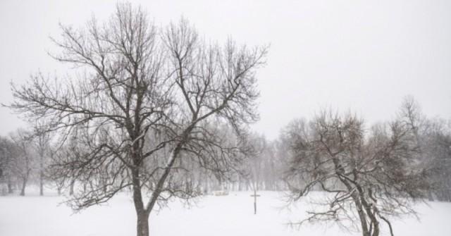 Метеоролози с дългосрочна прогноза-Пролетта няма да дойде скоро!